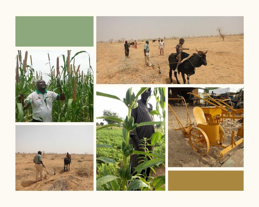 collage landbouwverbeteringen