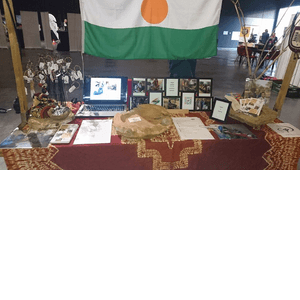 Stichting Niger Zending