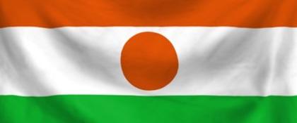 vlag van Niger